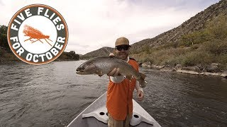 Trouts Fly Fishing: Five Flies for October 2018 - Fly Fishing the Colorado River