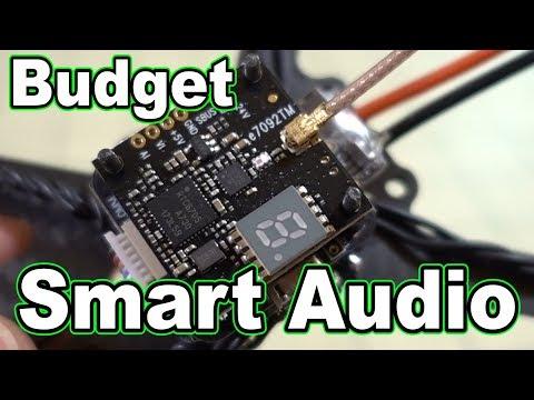 Budget Smart Audio VTX
