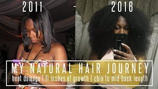 My Natural Hair Journey (w. Pictures) Heat Damage, Big Chop and Chin to MBL // HAIR