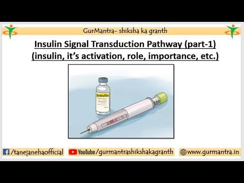Auliya bei Diabetes