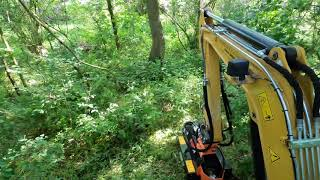 Sas land services  with Hedge cutter at Winkfield Row