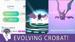Crobat  - (Pokémon) - Pokemon GO Crobat Evolution! Evolving Crobat from Golbat in Pokemon GO Generation 2 Update!