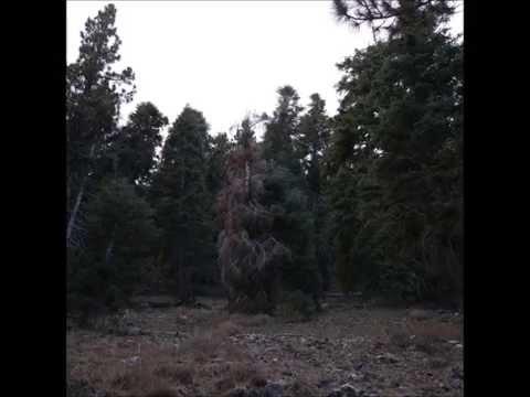 Xiu Xiu + Merzbow - Merzxiu B online metal music video by MERZBOW