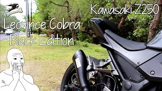 Kawasaki Z250 Leovince Cobra Black Edition Review/Test Ride