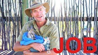 Be A Wildlife Carer   Get My Job