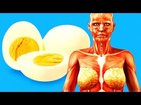 Что Будет с Вашим Телом, Если Есть По 2 Яйца Каждый День