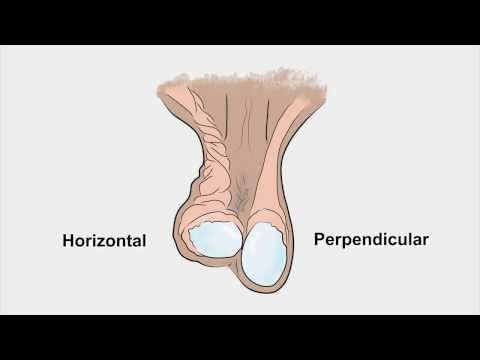 Krem zwiększający penisa