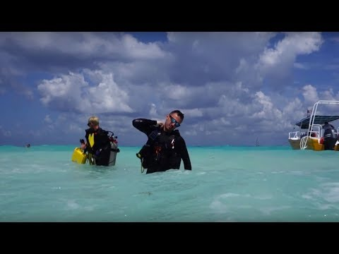 Scuba Diving in Playa Del Carmen, Mexico 2017