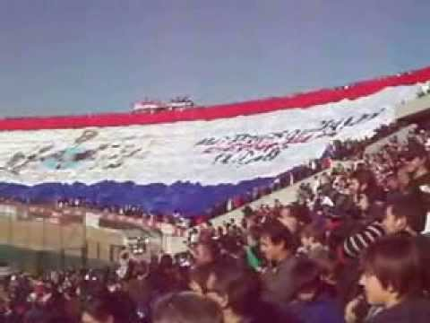 The Biggest Banner - Choreo by Nacional (Uruguay)