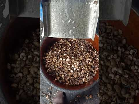 D Size Automatic Cashew Nut Cutting Machine
