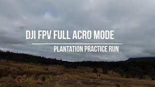 DJI FPV FULL ACRO MODE Plantation Practice run
