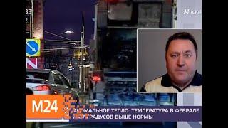 Температура в феврале в столице на 7 градусов выше нормы - Москва 24