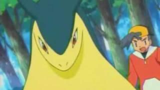 Typhlosion  - (Pokémon) - Typhlosion AMV - Fireproof ( for ShayminXStars contest)
