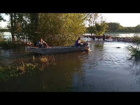 300 birkát mentettek ki az áradásból