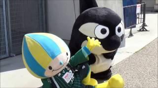 名岐ダービー~木曽川の合戦~