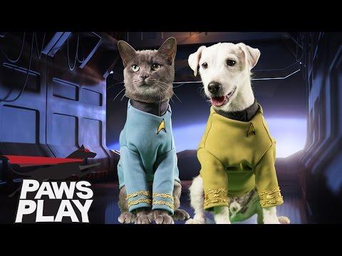 Star Trek: Into Barkness - Pawsplay