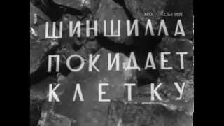 Иследования шиншилл от Гостелерадио СССР 1971 г.
