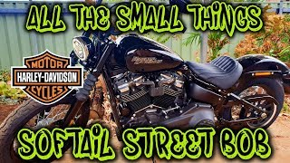 2019 Softail Street Bob - A Few Quick Mods