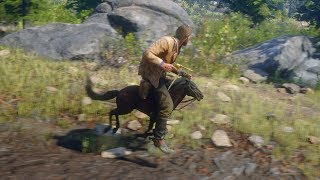 Red Dead Redemption 2 Baby Mini Horse Mod