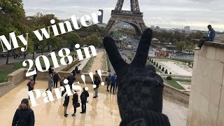 Falling Snow❄️ in Paris..  #myeuropewinterjourney2018
