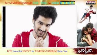 Tuneega Tuneega Movie Full Songs - Dhoodi Pinja Lanti Pilla Song