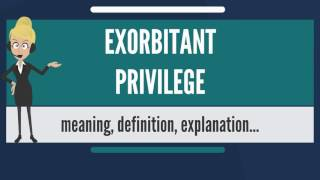 What is EXORBITANT PRIVILEGE? What does EXORBITANT PRIVILEGE mean? EXORBITANT PRIVILEGE meaning