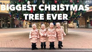 "QUADRUPLETS SEE ""THE BIGGEST CHRISTMAS TREE IN THE WORLD"""