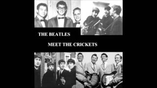 Don't Ever Change -The Crickets & The Beatles