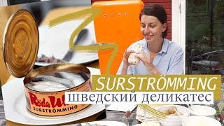 Как правильно есть знаменитую шведскую селедку сюрстрёмминг (surströmming)
