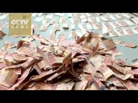 Couple piece together thousands in shredded banknotes