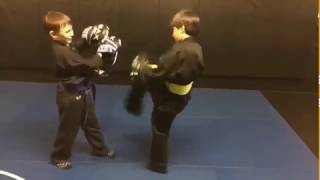 Stevenage junior martial arts