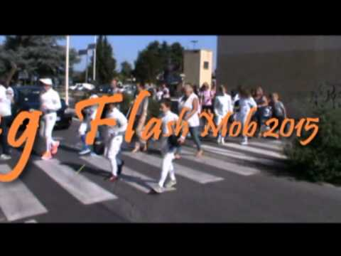 "Preview video Trailer del ""Fencing Flash Mob 2015"""