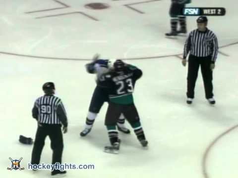 Francois Beauchemin vs. Jamal Mayers
