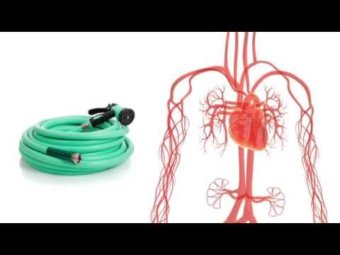 Lhypertension, lasthme, le coeur