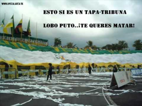 """LOBO SUR BEREIRA VS ARTILLERIA VERDE SUR"" Barra: Artillería Verde Sur • Club: Deportes Quindío"