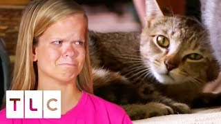 The Girls Rush Their Pet Cat River To The Animal Hospital   7 Little Johnstons