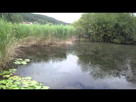 Stagno/ Teich - Monticolo/ Montiggl (Alto Adige/Südtirol, Italy)