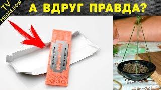 15 мифов в СССР, в которые верили подростки