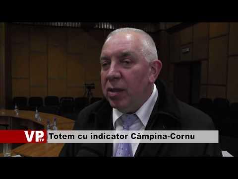 Totem cu indicator Câmpina-Cornu