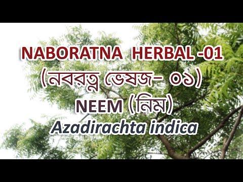 NABORATNA HERBAL -01 NEEM