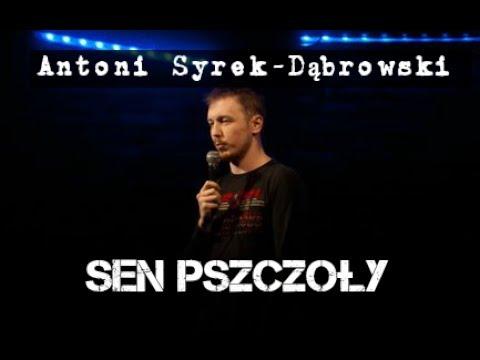 Antoni Syrek-Dąbrowski - Sen Pszczoły