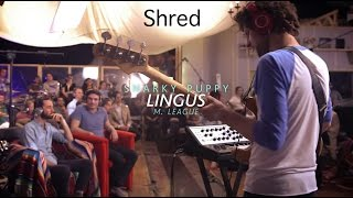 "Snarky Puppy "" Lingus"" Shred"