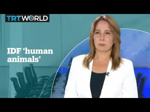 Israeli presenter slammed for calling IDF soldiers 'human animals'