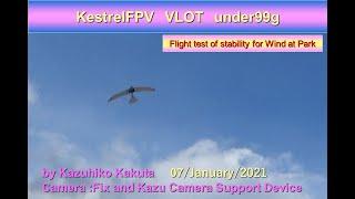 VLOT垂直離陸99g FPV機 風に対する安定性試験 KestrelFPV VLOT under99g: Flight test of stability for Wind at Park