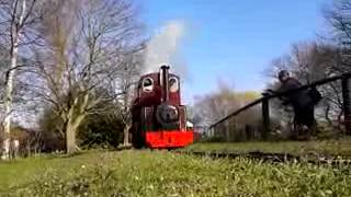 preview picture of video 'My two new tinkerbells at Swanley'