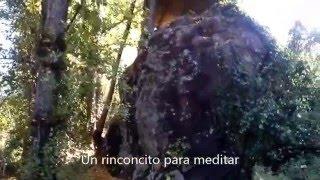Video del alojamiento Molino La Flor