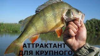 Аттрактанты на окуня для рыбалки своими руками