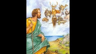 ПОЛОТНО С ЖИВОТНЫМИ - ДЕЯНИЯ АП., ЧТО ЭТО?  В христ. прог. МИР НЕ БУМАЖНЫЙ .