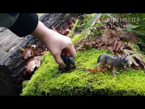 #Icicle pack episode 1 # wolf toys # kristina kashytska