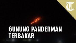 Gunung Panderman Terbakar, 2 Pendaki Terakhir Berhasil Selamat